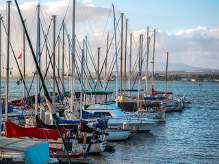 Sailboats docked at a marina in Hawaii