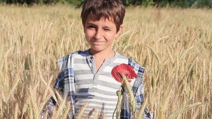 Boy in a wheat field
