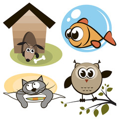 Owl, fish, cat and dog