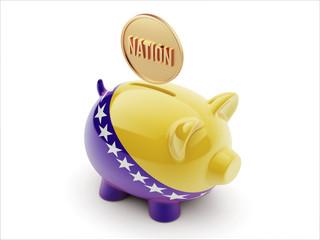 Bosnia and Herzegovina. Nation Concept Piggy Concept