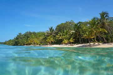 Sandy beach with tropical vegetation Caribbean sea