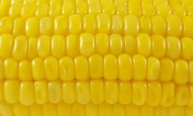 Fresh raw corn