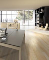 Luxury Office Area (detail)