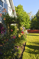 Joy of gardening.