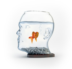 Head shaped fishbowl