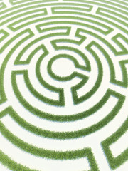 Labyrinth grass