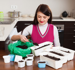 Brunette woman making  ground  in pots for sprouts
