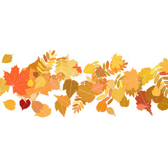 Autumn leaves falling and spinning on white.