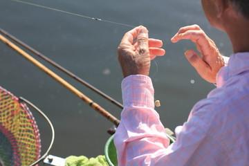 ヘラブナ釣り師