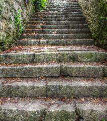escalier orthez