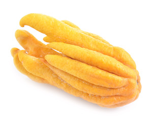 fragrant Buddha's hand or fingered citron fruit, Citrus medica i
