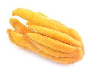 fragrant Buddha's hand or fingered citron fruit, Citrus medica i