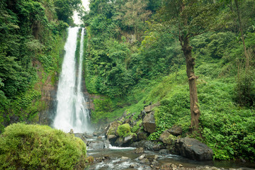 Waterfall in Bali jungle