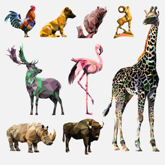 vector_animals