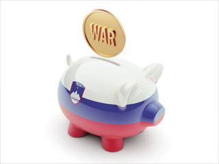 Slovenia War Concept. Piggy Concept