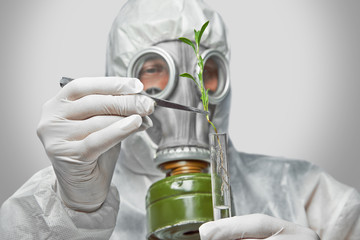 Scientist puts green plant in flask