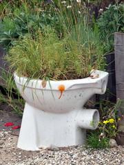 bepflanzte Toilette