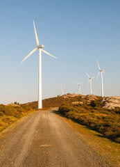 Wind turbines in a landscape with a trail