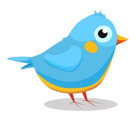 Cute baby blue bird cartoon