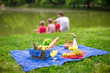 Picnic basket with fruits, bread and bottle of white wine - 66573491