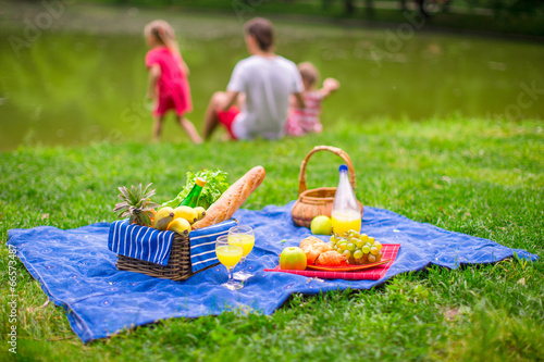 Family picnicking - 66573487