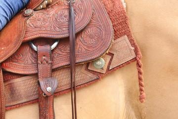 sella briglie accessori per cavalcare