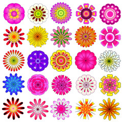 colorful flower vector set