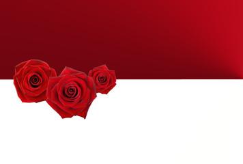 Fondo de rosas, San Valentín, Día de los Enamorados