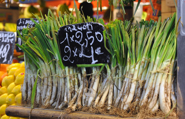 Green onions in the market