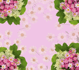 Scenic pink floral background with roses, daisies