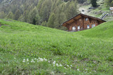 Lodge in Furi, Zermatt, Switzerland poster