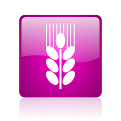 grain computer icon on white background