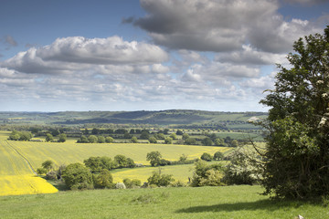 english countryside in the chiltern valley