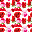 Seamless pattern of roses flowers
