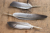 Three feathers on wooden background