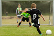 Kids soccer penalty kick - 66582604