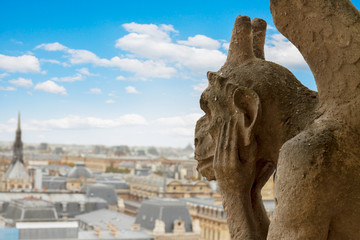 Gargoyle on Notre Dame Cathedral, France