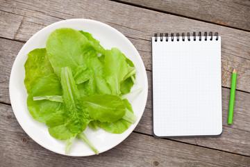Fresh healthy salad leaves