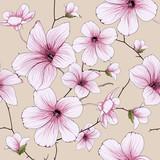 flower blossom illustration