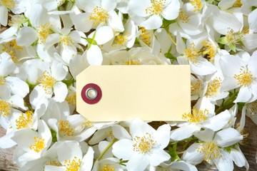 Jasminblüten mit Etikett