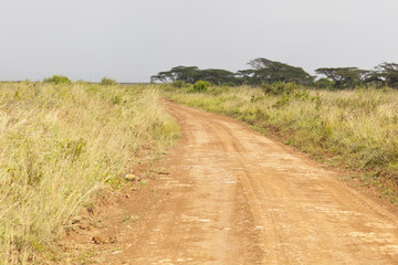 Nairobi National Park Road