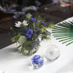 blue burr, cornflower and daisy