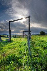 Farm corral with spring flowers and sun star