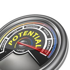 vector potential conceptual meter indicator