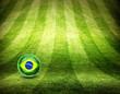 Brasilien Fußball WM