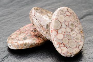 Fossil jasper beads