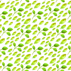 Watercolor seamless pattern with green leaf