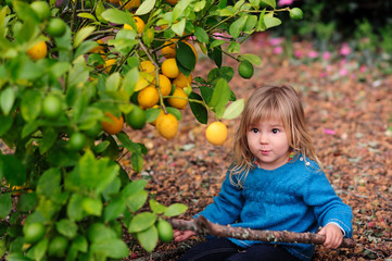 cute girl pick up harvest of lemon in autumn farm