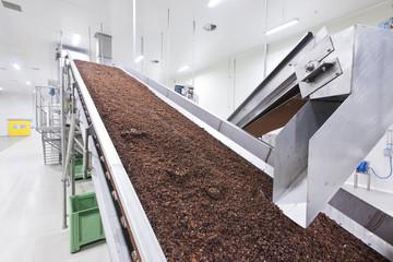 raisins in raisin production factory packaging