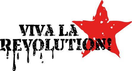 Viva la Revolution!, Anarchie, Punk, Grunge Style